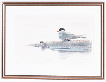 Lars Jonsson, lithograph in colours, signed EA.