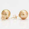A pair of 18k gold earrings with cultured pearls.