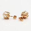 Örhängen, 14k guld, odlade pärlor.