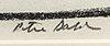 Peter dahl, a signed mixed media.