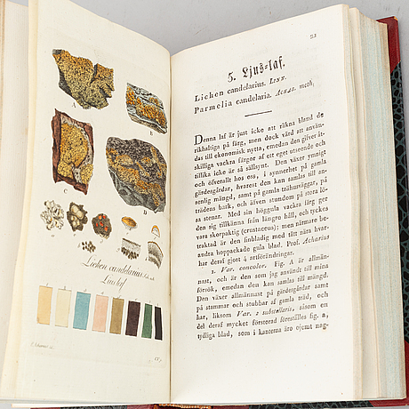 With 25 hand-coloured plates of lichens.