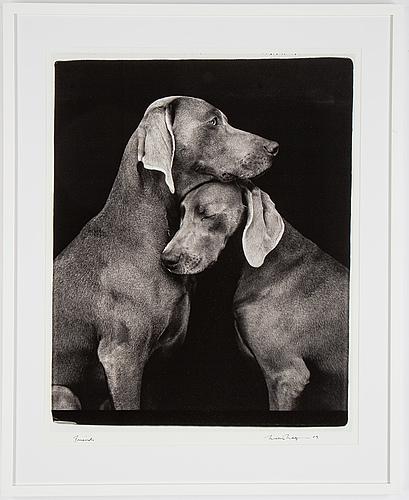 William wegman, fotografi, signerad och daterad 2009.