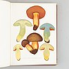 With 94 chromolithographs of mushrooms.