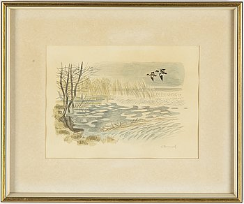 Gunnar Brusewitz, watercolour and pencil, signed.