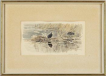 Gunnar Brusewitz, akvarell och blyerts, signerad och daterad IV-72.