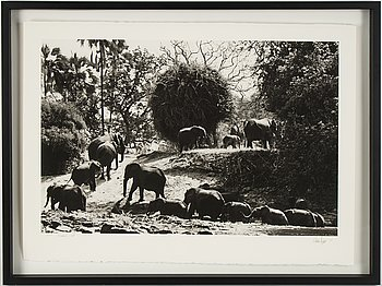Håkan Ludwigson, photograph signed and numbered 3/25.