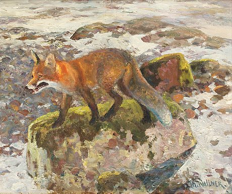 Thure wallner, fox.