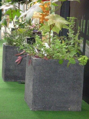 Krukor, två stycken. betong. skänkta av blomsterlandet.