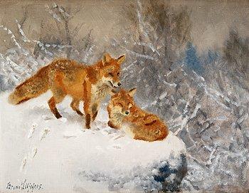 Bruno Liljefors, Two foxes in winter landscape  - Bukowskis