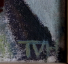 Vega holmstrÖm, tora, olja på duk, sign, etikettsmärkt a tergo 1920. prov; olof sager.