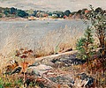 EDVARD WESTMAN, COAST VIEW. Sign. Oil on ca...