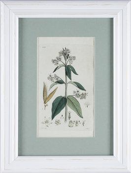 JOHAN WILHELM PALMSTRUCH, 6st, handkolorerade kopparstick, ca 1800.