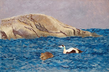 Bruno liljefors, eiders by an islet.