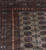 Matta, pakistan, 291 x 241.