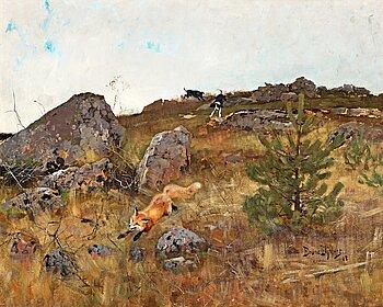 """519. Bruno Liljefors, """"Stövare jagande räv i höstlandskap""""."""