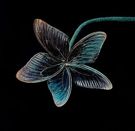 """Nathalia edenmont, """"love"""", 2005."""