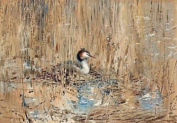 6. MOSSE STOOPENDAAL, Great crested grebe among the reeds.
