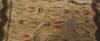 Matta, maskingjord flossa. ca 490 x 360.