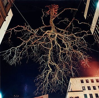 """220. Charlotte Gyllenhammar, """"Dö för dig, natt"""", 1993/2001."""