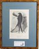 """KÖrner, magnus. handkolorerade litografier, 4 st. ur: """"skandinaviska fåglar"""" utgiven 1839-1846."""