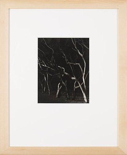"""Lennart olson, """"agadir ii"""", 1979."""