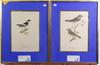 Wright, von wilhelm, färglitografier, 2 st; samt 2 st av annan konstnär.