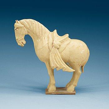 1446. A yellow glazed pottery figure of a horze, presumably Tang dynasty (618-907).