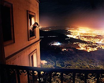"195. DAVID DREBIN, ""Room with a View"", 2010."