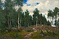 OLOF ARBORELIUS, BIRCHES. Sign. Oil on canv...