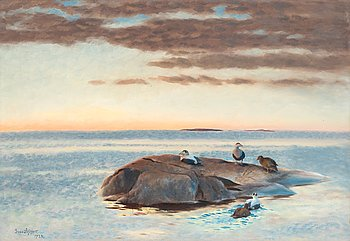 11. Bruno Liljefors, Common Eiders on a rock.