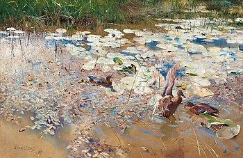 """30. Bruno Liljefors, """"Änder"""" / """"Wild Ducks""""."""