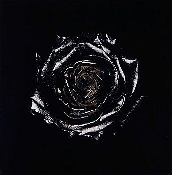 """317. Nathalia Edenmont, """"Burned"""", 2005."""