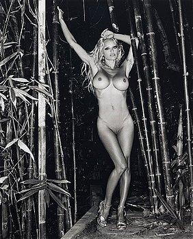 """307. Sante D'Orazio, """"Pamela Andersson, Hollywood 2000, Bamboo Nude #1""""."""