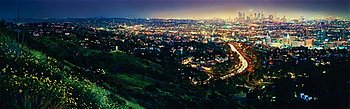 "361. DAVID DREBIN, ""Los Angeles"", 2008."
