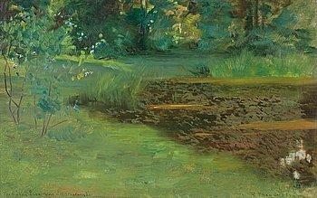 13. Robert Thegerström, Reflecting pond.