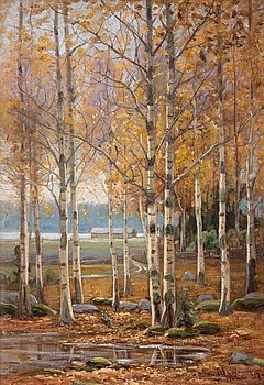15. Edvard Westman, BIRCH TREES IN AUTUMN COLORS.