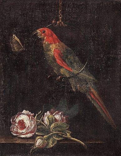 Stilleben med papegoja och fjäril.
