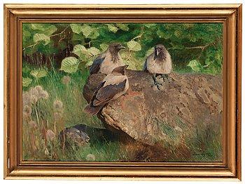 906. Bruno Liljefors, Crows.