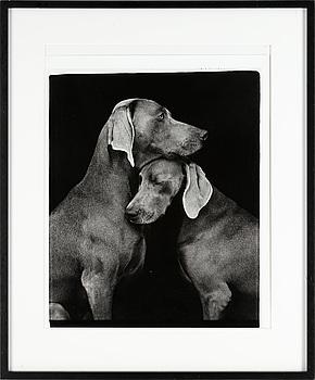 "WILLIAM WEGMAN, fotografi, ""Friends""."