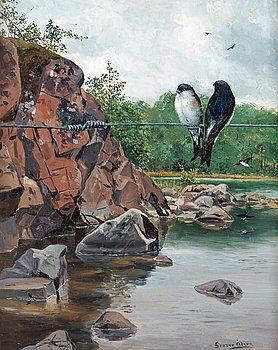 894. Gunnar Åberg, Swallows on a wire.