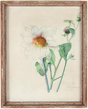 SIGRID HJERTÉN, blyerts och akvarell, signerad.