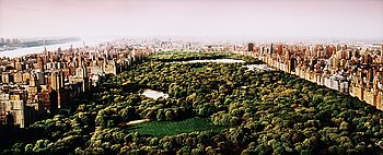 "213. DAVID DREBIN, ""Dreams of Central park"", 2006."