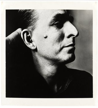 88. Irving Penn, A PHOTOGRAPH,