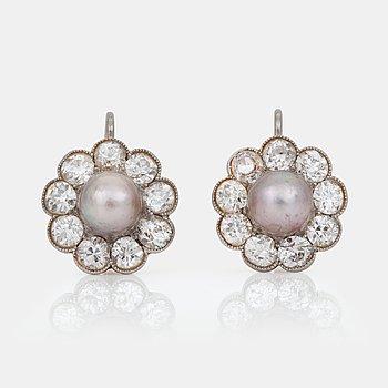 489. ÖRHÄNGEN med grå troligen naturliga pärlor, Ø 6.2-6.4 mm  samt briljantslipade diamanter totalt ca 2.55 ct.