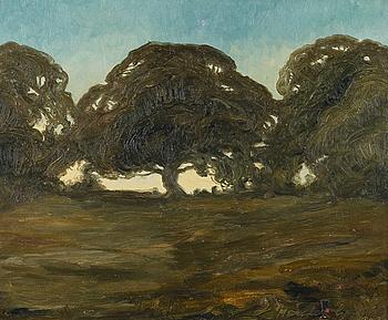HARALD GALLEN, öljy kankaalle, signeerattu ja päivätty 1907.