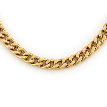 A curb-link necklace.