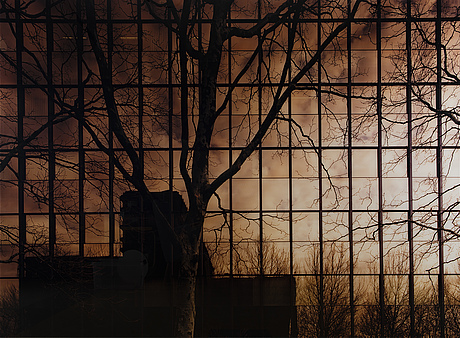 "Ola kolehmainen, ""untitled (no.10)"", 2005."