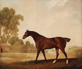 "234. GEORGE STUBBS, ""Eagle, a bay racehorse""."