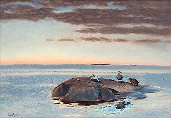 299. Bruno Liljefors, Common Eiders on a Rock.