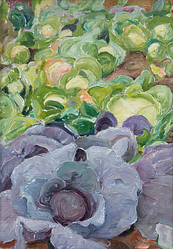 "PEKKA HALONEN, ""RED CABBAGE BED""."